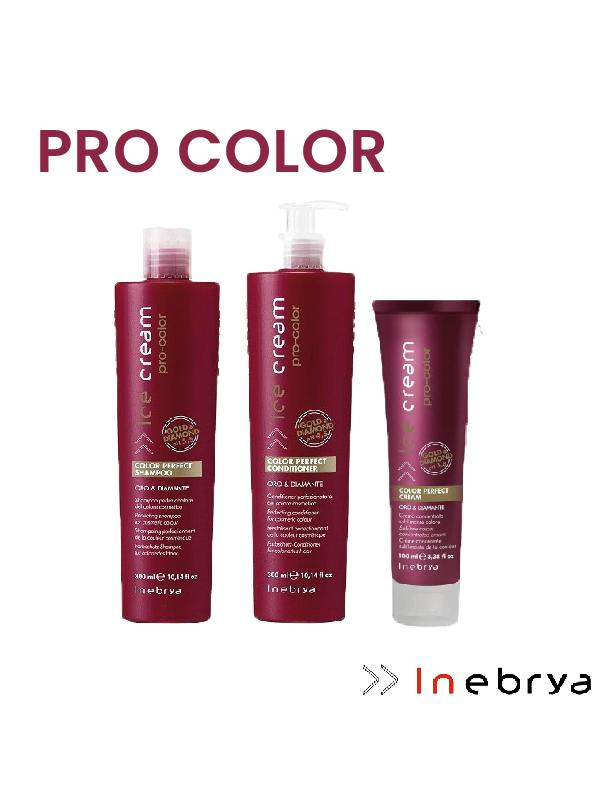 Kit cheveux colorés Pro Color Inebrya
